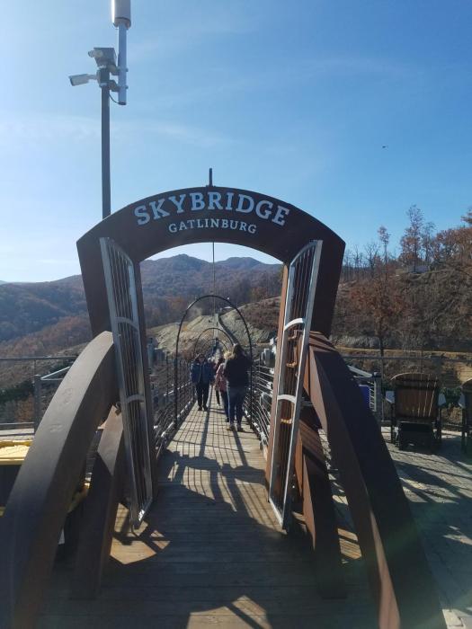 Sky Bridge4